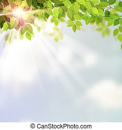 verão, folhas, verde, fresco