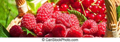 verão, fruta
