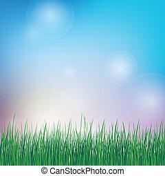 verão, fundo, com, grama verde
