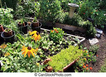 verão, jardim