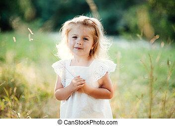 verão, nature., ensolarado, waist-up, pequeno, retrato,...