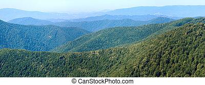 verão, nebuloso, montanha, floresta, panorama
