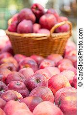 verão, orgânica, natureza, capim, maçãs, cesta, fresco