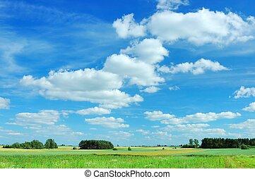 verão, paisagem