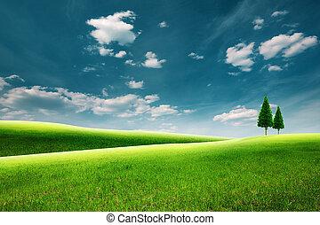 verão, paisagem rural, com, colinas verdes, sob, céus azuis