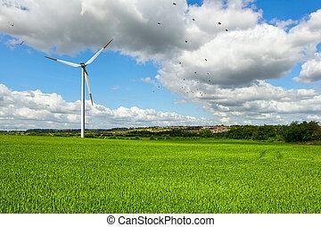 verão, paisagem verde