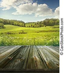 verão, pastoral, fundo, com, pranchas madeira