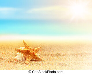 verão, praia., starfish, tempo