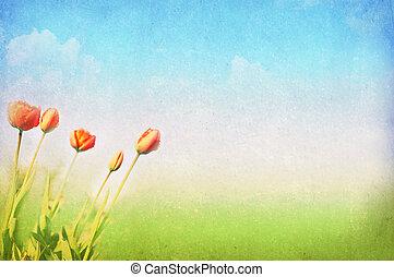 verão, primavera, fundo