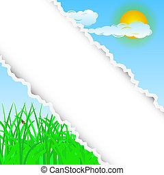 verão, rasgado, fundo, com, lugar, para, seu, text., vetorial, ilustração