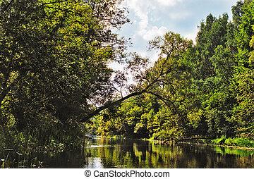 verão, rio