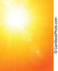 verão, sol, lente, quentes, vibrante, fl
