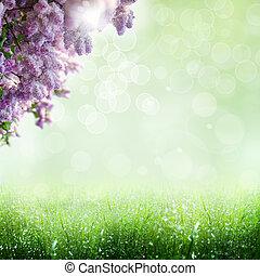 verão, time., abstratos, optimista, fundos, com, lilás, árvore