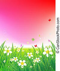 verão, verde, pôr do sol, fundo, campo