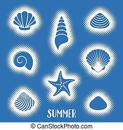 verão, vetorial, cartão, escudos mar