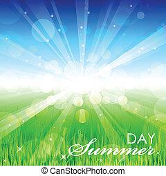 verão, vetorial, -, dia, fundo