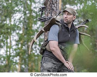 verano, alce, el suyo, cazador, espalda, arco, lleva, bosque...