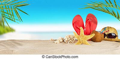 verano, arena, accesorios, tropical, Plano de fondo,...