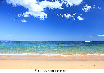 verano, australiano, playa