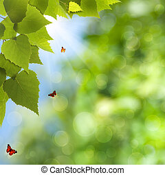 verano, belleza natural, primavera, fondos, bokeh