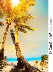 verano, concepto, arte, playa, océano de vacaciones