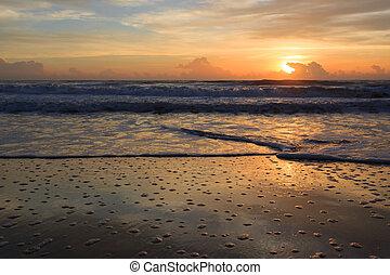 verano, en la playa, plano de fondo, hermoso, salida del sol