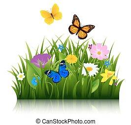 verano, flores, con, mariposa