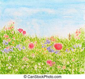 verano, flores, en, día, pradera