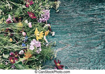 verano, flores, simulado, arriba
