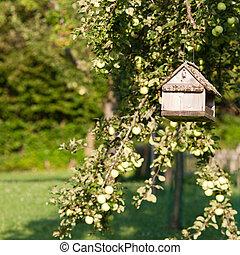 verano, huerto, país, sol, árbol, lit, table/feeder, suspendido, pájaro
