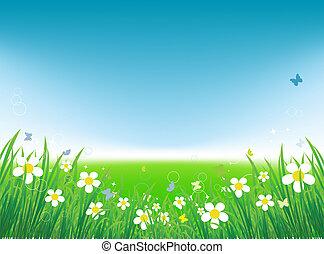 verano, mariposas, fondo verde, campo
