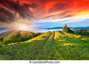 verano, montañas., salida del sol, colorido