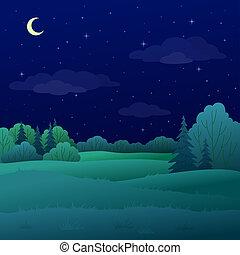 verano, paisaje, bosque, noche