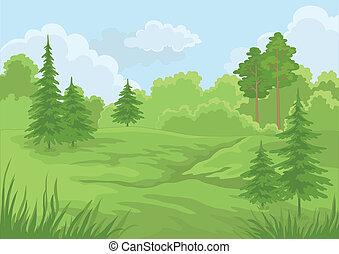 verano, paisaje, bosque