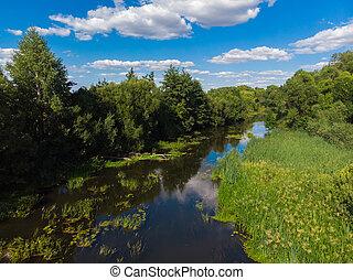 verano, paisaje, con, río, en, rusia