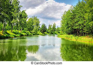 verano, paisaje, con, río, y azul, cielo