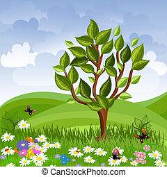 verano, paisaje, con, un, joven, árbol