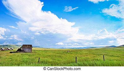 verano, paisaje, en, alberta, canadá