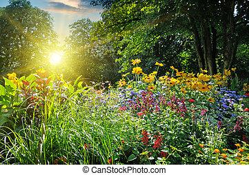 verano, parque, con, un, hermoso, cantero