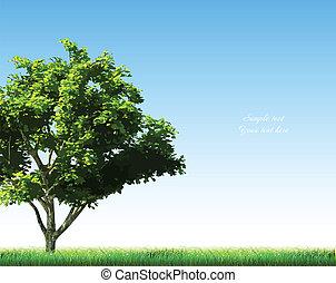 verano, plano de fondo, con, pasto o césped, y, árbol., vector