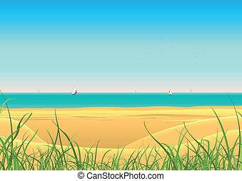 verano, playa, con, velero, postal, plano de fondo