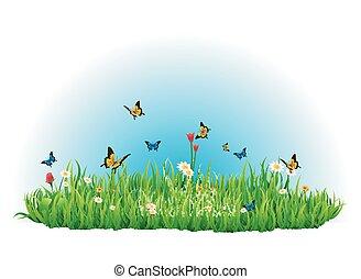 verano, pradera verde