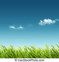 verano, primavera, resumen, fondos, diseño, su