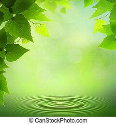 verano, resumen, fondos, morning., ambiental