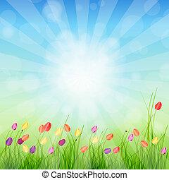 verano, resumen, plano de fondo, con, pasto o césped, y, tulipanes, contra, soleado, sky., vector, illustration.