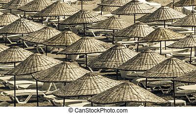 verano, sun loungers, soleado, paraguas, sobre, playa,...