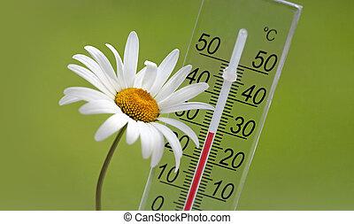 verano, temperatura