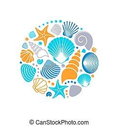 verano, vector, colorido, conchas de mar
