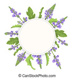 Verbena Round Circle badge. leaf branch, flowers and leaves. Vervain Herb template. for alternative medicine, cosmetics, health care product, aromatherapy, enclosure, flyer, flier, text copy space