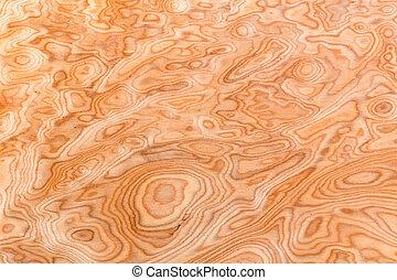verdadero, madera, grano, textura